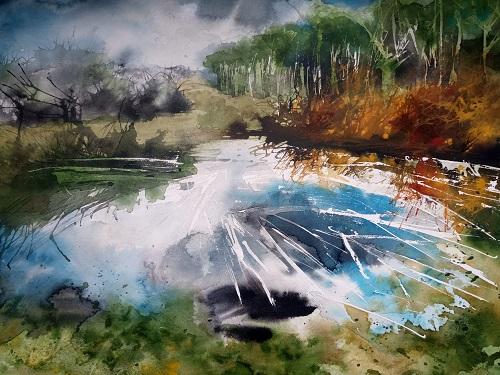 forest pool, longdown