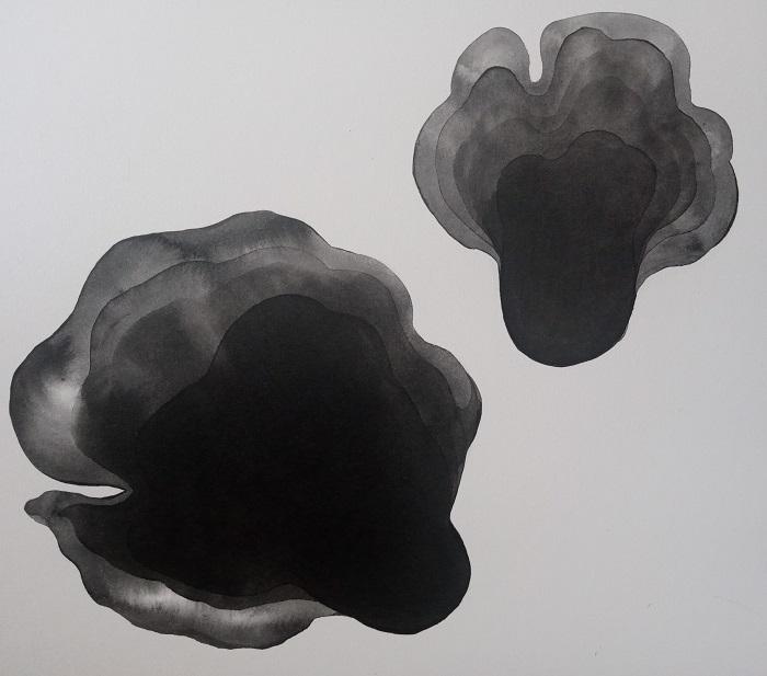 funghi2
